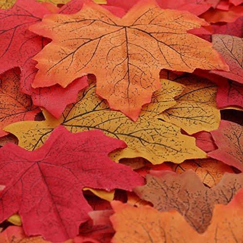 Ideen Und Produkte Zum Thema Herbstdeko Basteln Dekozeiten Com
